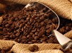 how-to-store-coffee-beans